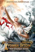 "Обложка книги ""Хроники Игрока: Воин пропавшей богини"""