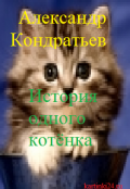 """Обложка книги """"История одного котёнка."""""""