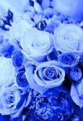 """Обложка книги """"Там цветут синие розы..."""""""