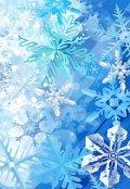 """Обложка книги """"Прекрасное в снеге"""""""