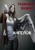"""Обложка книги """"Трудовые будни ангелов"""""""