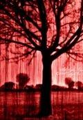 """Обложка книги """"Красный дождь."""""""
