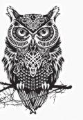 """Обложка книги """"Чёрные Совы: Пробуждение"""""""