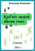 """Обложка книги """"Как пёс зверей жизни учил"""""""