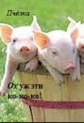 """Обложка книги """"Ох уж эти ко-ко-ко!"""""""