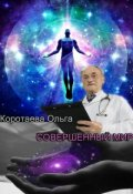 """Обложка книги """"Совершенный мир"""""""