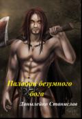 "Обложка книги ""Паладин безумного бога"""