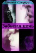 """Обложка книги """"Забытая ночь"""""""