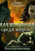 """Обложка книги """"Блуждающая среди миров-2"""""""