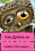 """Обложка книги """"Как Дрёма за невестой ходил..."""""""