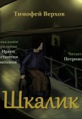 "Обложка книги ""Шкалик"""