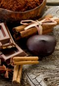 "Обложка книги ""chocolate panic"""