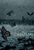 "Обложка книги ""Liars in this hospital for souls"""