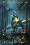 """Обложка книги """"Призрачный чародей. Дитя эльфов"""""""