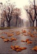 """Обложка книги """"Осенний сумрак.Продолжение."""""""
