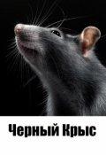 """Обложка книги """"Черный Крыс"""""""