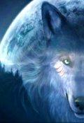 """Обложка книги """"Свет луны"""""""