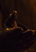 """Обложка книги """"Только руку протяни"""""""