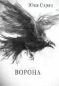 """Обложка книги """"Ворона"""""""