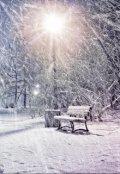 """Обложка книги """"Снег с луны"""""""