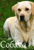 """Book cover """"Собака"""""""