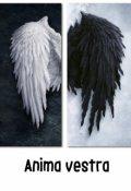 """Обложка книги """"Anima vestra, или Твоя душа"""""""