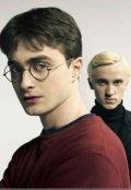 """Обложка книги """"Гарри Поттер или Родовая Магия"""""""