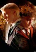 """Обложка книги """"Гарри Поттер или Родовая Магия 2"""""""