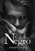 """Cubierta del libro """"Caballero Negro"""""""