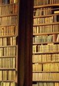 """Обкладинка книги """"Бібліотека"""""""