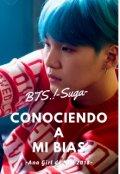 """Cubierta del libro """"Conociendo a mi bias (bts)-Suga-"""""""