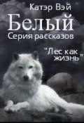 """Обложка книги """"Белый"""""""