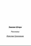 """Обложка книги """"Изяслав Сроковник"""""""