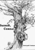 """Обложка книги """"Бывай, Сокол!"""""""