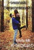 """Обложка книги """"Мальчик из будущего"""""""