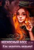 """Обложка книги """"Несносный босс или Как укротить ведьму! """""""