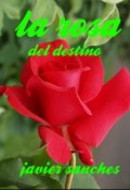 "Cubierta del libro ""La rosa del destino """