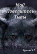 """Обложка книги """"Мой Повелитель Тьмы"""""""