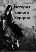 """Обложка книги """"История одного Херцога"""""""