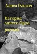 """Обложка книги """"История одного Орла"""""""