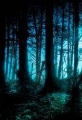 """Обложка книги """"Однажды в лесу"""""""
