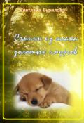 """Обложка книги """"Сэминн из клана золотых имургов"""""""