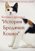 """Обложка книги """"История Бродячей Кошки"""""""