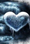 """Обложка книги """"У холода нет сердца"""""""