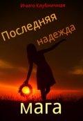 """Обложка книги """"Последняя надежда мага"""""""