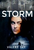 """Cubierta del libro """"Storm"""""""