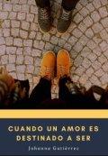 """Cubierta del libro """"Cuando un amor es destinado a ser"""""""