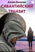 """Обложка книги """"Сибантийский транзит"""""""