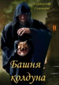 """Обложка книги """"Башня колдуна"""""""