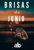 """Cubierta del libro """"Brisas de Junio"""""""